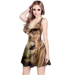 Roaring Lion Reversible Sleeveless Dress