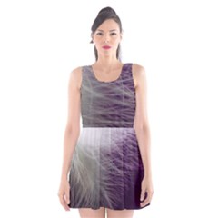 Feather Ease Airy Spring Dress Scoop Neck Skater Dress by Nexatart