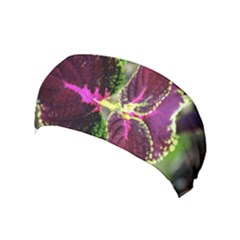 Plant Purple Green Leaves Garden Yoga Headband by Nexatart