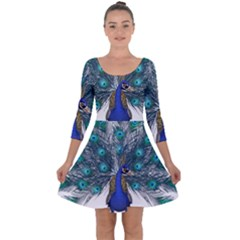 Peacock Bird Peacock Feathers Quarter Sleeve Skater Dress by Sapixe