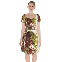 Doves Matchmaking 3 Short Sleeve Bardot Dress by bestdesignintheworld