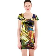 In A Mountains   State Washingtone Short Sleeve Bodycon Dress