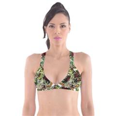 April   Birds Of Paradise 5 Plunge Bikini Top by bestdesignintheworld