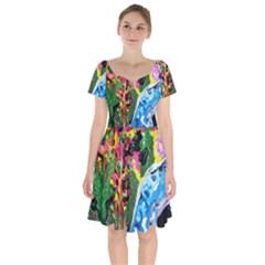 Dscf1611 - Lady In Kimono And Tulip Tree Short Sleeve Bardot Dress by bestdesignintheworld