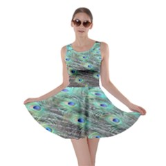 Peacock Feathers Skater Dress by chihuahuadresses