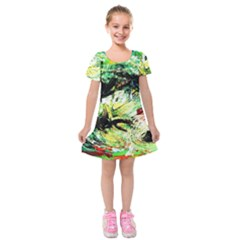 In The Nest And Around 4 Kids  Short Sleeve Velvet Dress by bestdesignintheworld
