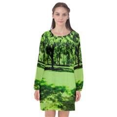 Lake Park 13 Long Sleeve Chiffon Shift Dress  by bestdesignintheworld