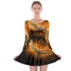 Art Creative Graphic Arts Owl Long Sleeve Skater Dress