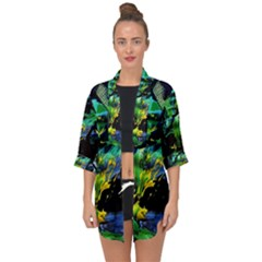 Rumba On A Chad Lake 10 Open Front Chiffon Kimono by bestdesignintheworld