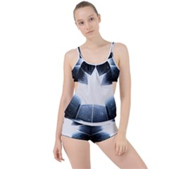 Portrait Panther Boyleg Tankini Set  by Modern2018
