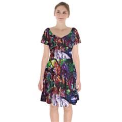 Gatchina Park 2 Short Sleeve Bardot Dress by bestdesignintheworld