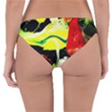 Drama 1 Reversible Hipster Bikini Bottoms View4