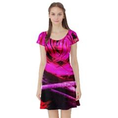Calligraphy 2 Short Sleeve Skater Dress by bestdesignintheworld