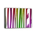 Summer Colorful Rainbow Typography Mini Canvas 7  x 5