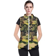 Hot Day In Dallas 25 Women s Puffer Vest by bestdesignintheworld