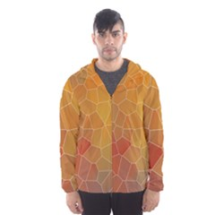 Colors Modern Contemporary Graphic Hooded Windbreaker (men) by Sapixe