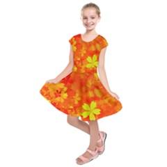 Background Reason Pattern Design Kids  Short Sleeve Dress