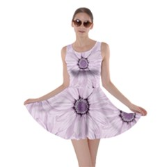 Background Desktop Flowers Lilac Skater Dress