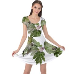 Leaves Plant Branch Nature Foliage Cap Sleeve Dress