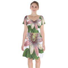 Passion Flower Flower Plant Blossom Short Sleeve Bardot Dress by Sapixe