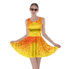 Abstract Explosion Blow Up Circle Skater Dress