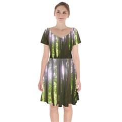 Tree Of Trees Short Sleeve Bardot Dress