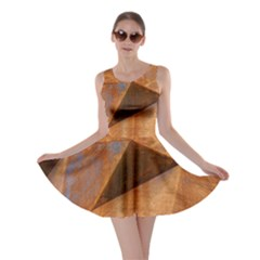 Steel Corten Steel Brown Steel Skater Dress