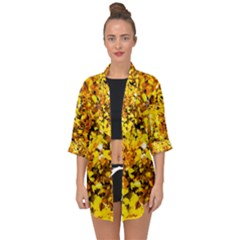 Birch Tree Yellow Leaves Open Front Chiffon Kimono by FunnyCow