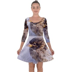 Funny Wet Sparrow Bird Quarter Sleeve Skater Dress by FunnyCow