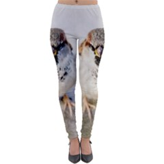 Do Not Mess With Sparrows Lightweight Velour Leggings by FunnyCow
