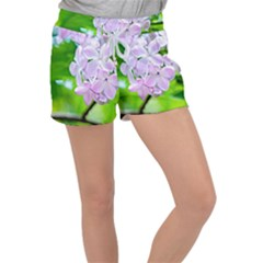 Elegant Pink Lilacs In Spring Women s Velour Lounge Shorts by FunnyCow