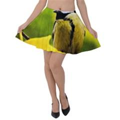 Tomtit Bird Dressed To The Season Velvet Skater Skirt by FunnyCow