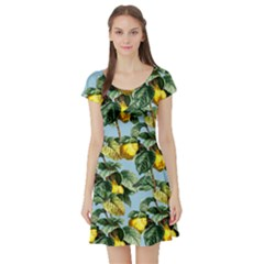 Fruit Branches Blue Short Sleeve Skater Dress by snowwhitegirl