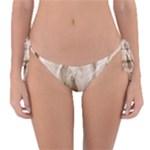Paper 2385243 960 720 Reversible Bikini Bottom