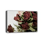 Roses 1802790 960 720 Mini Canvas 6  x 4  (Stretched)
