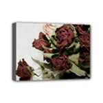 Roses 1802790 960 720 Mini Canvas 7  x 5  (Stretched)