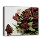 Roses 1802790 960 720 Canvas 14  x 11  (Stretched)