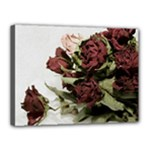 Roses 1802790 960 720 Canvas 16  x 12  (Stretched)