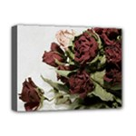 Roses 1802790 960 720 Deluxe Canvas 16  x 12  (Stretched)