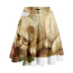 Cat 1827211 1920 High Waist Skirt by vintage2030