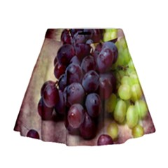 Red And Green Grapes Mini Flare Skirt by FunnyCow