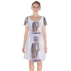 Bird 2552769 1920 Short Sleeve Bardot Dress by vintage2030