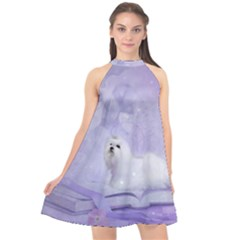 Cute Little Maltese, Soft Colors Halter Neckline Chiffon Dress  by FantasyWorld7