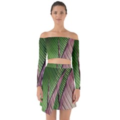 Leaf Banana Leaf Greenish Lines Off Shoulder Top With Skirt Set