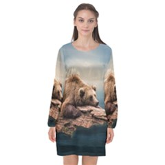 Bear Water Long Sleeve Chiffon Shift Dress