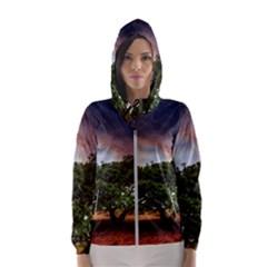 Lone Tree Fantasy Space Sky Moon Hooded Windbreaker (women) by Alisyart