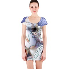 Model Color Traditional Short Sleeve Bodycon Dress