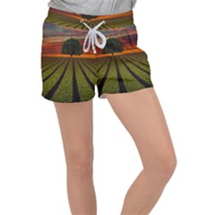 Natural Tree Women s Velour Lounge Shorts by Alisyart