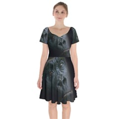 Gorilla Monkey Zoo Animal Short Sleeve Bardot Dress by Nexatart