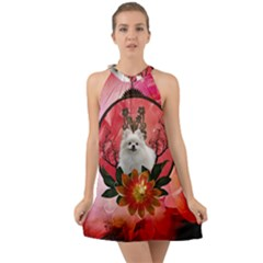 Cute Pemeranian With Flowers Halter Tie Back Chiffon Dress by FantasyWorld7